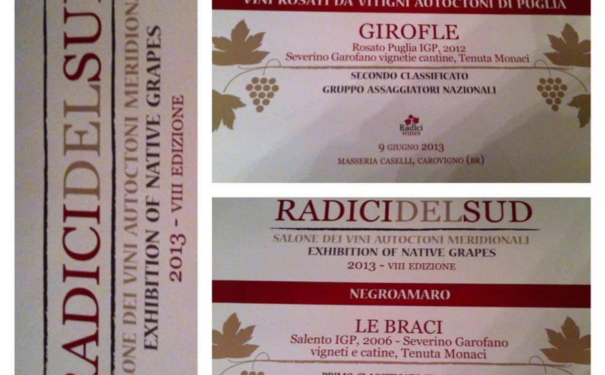 i premi di Radici del Sud 2013